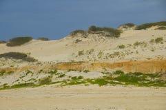 plażowe diuny Zdjęcia Royalty Free