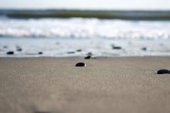 Plażowego piaska oceanu morza denne fala Obraz Royalty Free