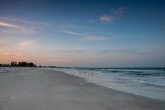 plażowi budynki Florida Obrazy Royalty Free