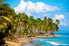 plażowi Caribbean Obrazy Royalty Free