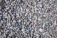 plażowi kamienie Zdjęcia Royalty Free