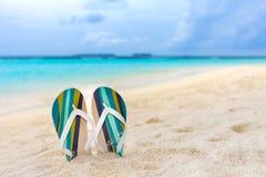 Plażowi kapcie w piasku przy Maldives Obraz Royalty Free