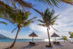 Pla?owi krzes?a, parasol i palmy na pi?knej pla?y dla, wakacji i relaksu przy Koh Lipe wysp?, Tajlandia obraz royalty free