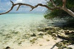 plażowi Malediwy Fotografia Royalty Free