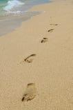plażowi odcisk stopy Zdjęcie Stock