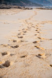 plażowi odcisk stopy Obrazy Stock