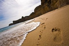 plażowi odciski stóp zdjęcia royalty free