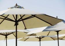 plażowi parasolki cukierniani Zdjęcie Royalty Free