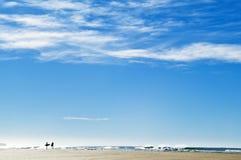 plażowi surfingowowie Fotografia Royalty Free