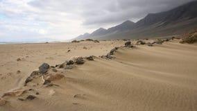plażowy cofete Fuerteventura wyspy wysp surfboard Obraz Royalty Free