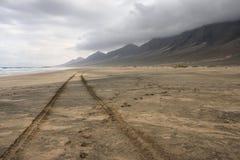 plażowy cofete Fuerteventura wyspy wysp surfboard Obraz Stock