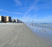 plażowy daytona Zdjęcie Stock