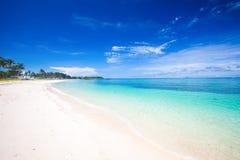 plażowy denny tropikalny Obraz Royalty Free
