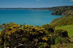 plażowy Devon piasków slapton w kierunku widok Zdjęcie Stock