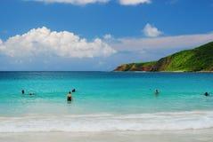 plażowy flamenco Zdjęcia Stock