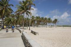 plażowy Florida Miami usa Obraz Royalty Free