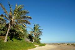 plażowy jandia Obraz Stock