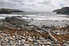 plażowy kamienisty Obrazy Royalty Free