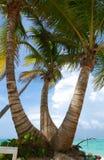 plażowy karaibski Obrazy Stock