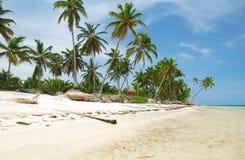 plażowy karaibski dziki Zdjęcia Stock