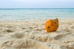plażowy koks Obrazy Royalty Free