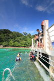 plażowy koral Zdjęcie Royalty Free