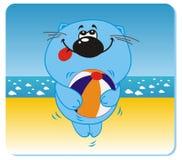 plażowy kot Zdjęcia Royalty Free