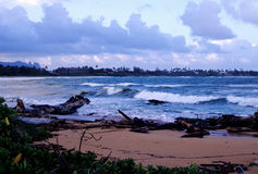 plażowy lydgate obrazy royalty free