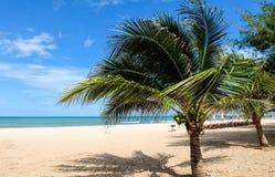 plażowy niebieskie niebo Zdjęcie Royalty Free