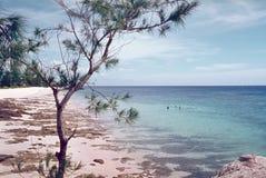 plażowy oceanu indyjskiego Obrazy Royalty Free