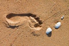 plażowy odcisk stopy zdjęcia royalty free