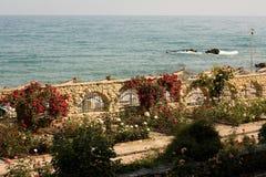 plażowy ogród Obraz Stock