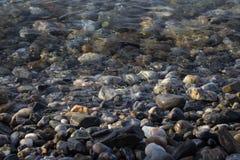 plażowy otoczak Zdjęcie Stock