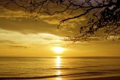 plażowy piaskowaty biel Obraz Royalty Free