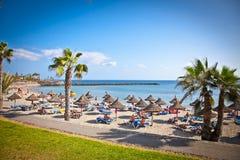 Plażowy Playa De Los angeles Dukt w Tenerife, Hiszpania. Obraz Royalty Free