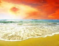 plażowy pogodny tropikalny Obraz Royalty Free
