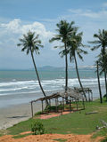 plażowy potargany Zdjęcia Stock