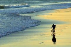 plażowy rowerzysta Obraz Stock
