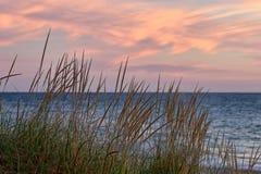 Plażowy trawy jezioro michigan zmierzch Zdjęcie Royalty Free