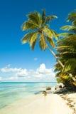 plażowy tropikalny Fotografia Stock