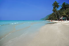 plażowy tropikalny Obraz Stock