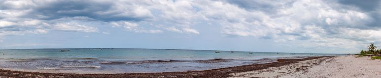 plażowy Tulum Meksyk Zdjęcie Stock