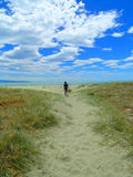 Plażowy wakacje z shrubland, Obrazy Royalty Free