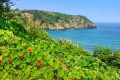 Plaża Pechon, Cantabria, Hiszpania Obraz Stock