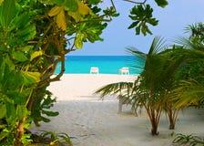 plaża przewodniczy tropikalnego Fotografia Stock