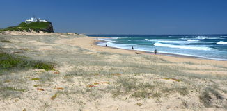 Plaża przy Newcastle Zdjęcie Royalty Free