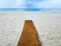 plaża target2442_0_ Zdjęcie Royalty Free