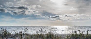 Plaża, trawa i chmurny, Obraz Stock