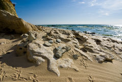 Plaża Tsimlyansk rezerwuar Obrazy Royalty Free