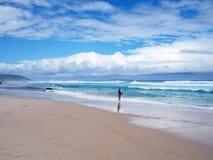 Plaża w Albany Fotografia Stock